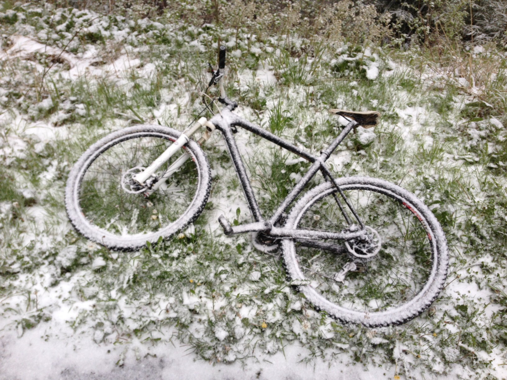 I only left it there for 5 minutes. The wonders of winter riding in Switzerland.